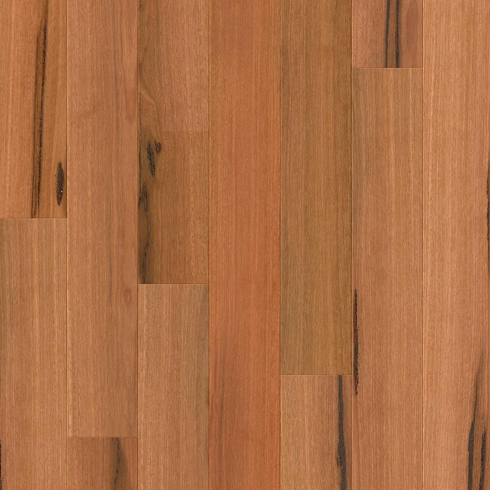 Compact - Timber Flooring - Spotted Gum