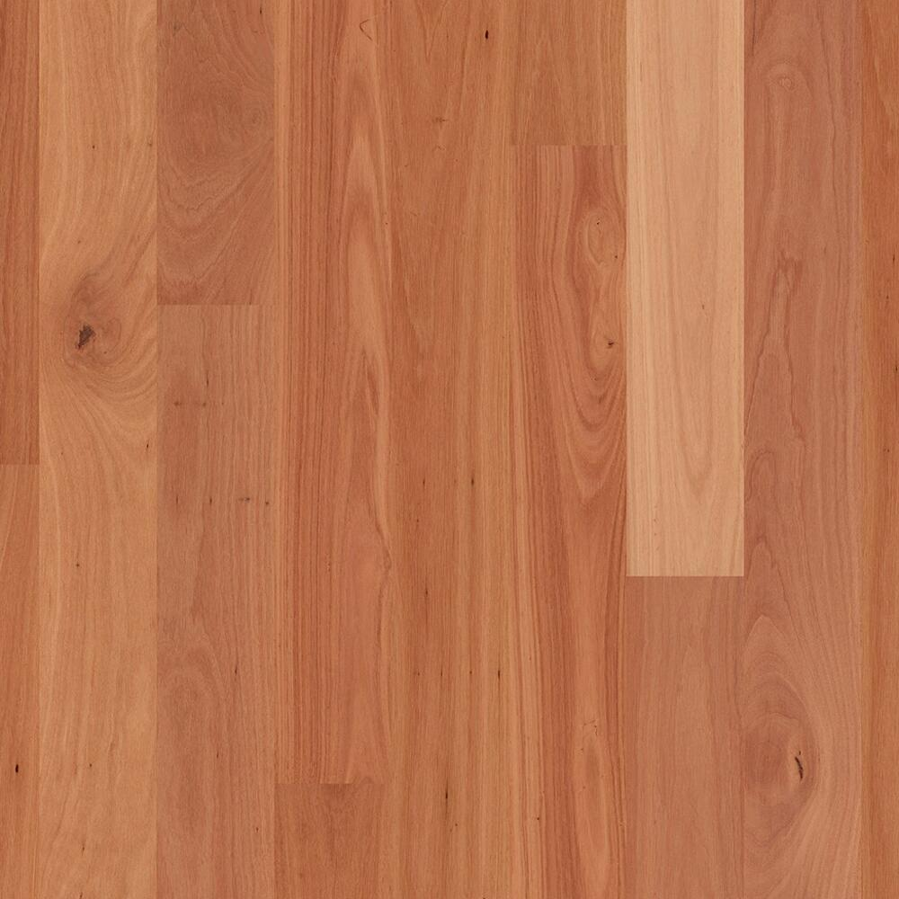 ReadyFlor - Timber Flooring - Sydney Blue Gum 1strip