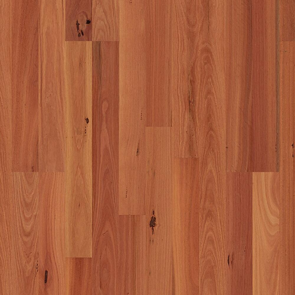 ReadyFlor - Timber Flooring - Sydney Blue Gum 2strip