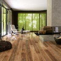 Colonial - Laminate flooring - Spotted Gum