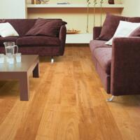 Eligna - Laminate Flooring - Natural Varnished Cherry