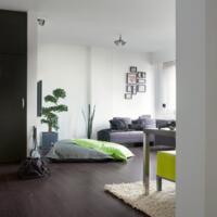 Eligna - Laminate Flooring - Wenge